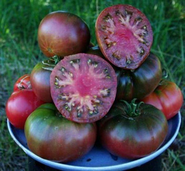 بذر گوجه فرنگی Black kirim ارگانیک