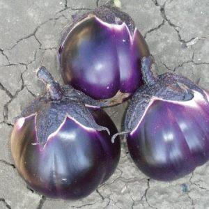 بذر بادمجان ینفش ایتالیایی ارگانیک